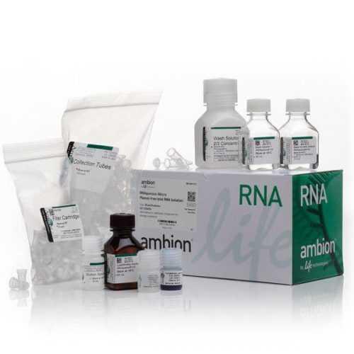 کیت بیولوژی مولکولی | خرید کیت بیولوژی مولکولی | فروش کیت بیولوژی مولکولی