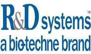 شرکت Rnd systems