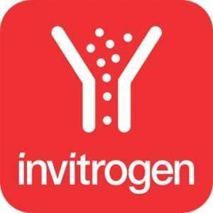 محصولات Invitrogen | برند Invitrogen | لیست مواد پرکاربرد و پرفروش برند Gibco