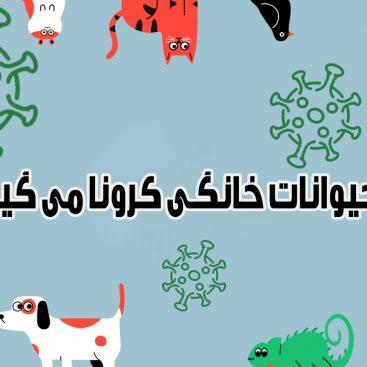 آیا حیوانات خانگی کرونا می گیرند ؟